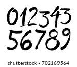 vector set of calligraphic... | Shutterstock .eps vector #702169564