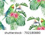 green parrot  hibiscus ... | Shutterstock . vector #702180880
