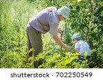 grandfather and grandson... | Shutterstock . vector #702250549