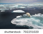 polar bear on ice floe in... | Shutterstock . vector #702251020