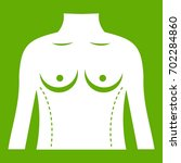 plastic surgery of torso icon... | Shutterstock .eps vector #702284860