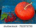 pumpkin nuts viburnum and fruit ... | Shutterstock . vector #702373750