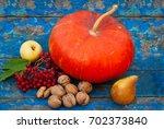 pumpkin nuts viburnum and fruit ... | Shutterstock . vector #702373840