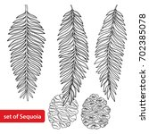 vector set with outline sequoia ... | Shutterstock .eps vector #702385078