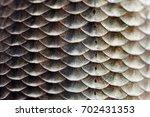 Fish Scales Skin Texture Macro...