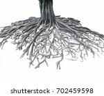 big root tree isolated.   Shutterstock . vector #702459598