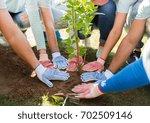 volunteering  charity  people... | Shutterstock . vector #702509146
