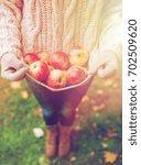 farming  gardening  harvesting... | Shutterstock . vector #702509620