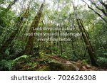 Small photo of Blurry nature background with Inspirational quote - Look deep into nature and then you will understand everything better