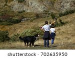 hiking boys with dog