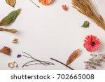 autumn background  fallen... | Shutterstock . vector #702665008