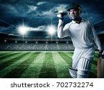 cricket player batsman showing... | Shutterstock . vector #702732274