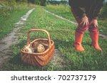 fresh mushrooms in kid hands....   Shutterstock . vector #702737179