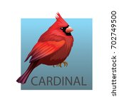 Stock vector northern cardinal bird on a white background vector illustration isolated birds red bird animals 702749500