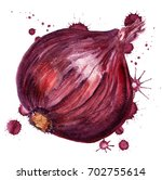watercolor image of red onion... | Shutterstock . vector #702755614
