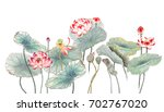 Chinese-style drawings, sketches, Lotus,Water Lily