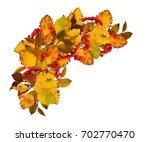 autumn corner arrangement from... | Shutterstock . vector #702770470