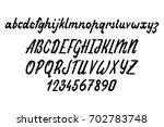 vector alphabet. calligraphic... | Shutterstock .eps vector #702783748
