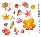 collection beautiful colorful... | Shutterstock .eps vector #702832690