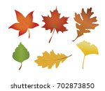 autumn leaves set vector... | Shutterstock .eps vector #702873850