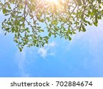 blue sky with clouds with the... | Shutterstock . vector #702884674