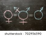 gender symbols and the equal... | Shutterstock . vector #702956590