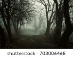 scary forest in fog | Shutterstock . vector #703006468