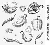 hand drawn pepper. vegetables.... | Shutterstock . vector #703010356