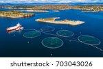 salmon fish farm. hordaland ... | Shutterstock . vector #703043026