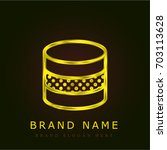 database golden metallic logo