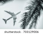 airplane flying between palms.... | Shutterstock . vector #703129006