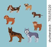 dog breed silhouette colorful... | Shutterstock . vector #703155220
