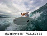 muscular surfer with long white ... | Shutterstock . vector #703161688