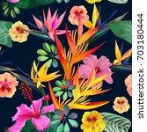 Exotic Tropical Strelitzia...
