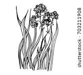 grass | Shutterstock .eps vector #703211908