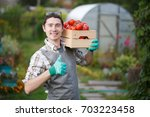 smiling man with tomato harvest | Shutterstock . vector #703223458