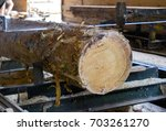 sawmill. process of machining... | Shutterstock . vector #703261270