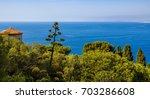 mediterranean sea and trees in... | Shutterstock . vector #703286608