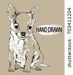 cute little puppy. puppy... | Shutterstock .eps vector #703411204