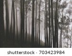 magican forest trees with... | Shutterstock . vector #703423984
