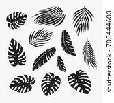 palm leaves set. banana ... | Shutterstock .eps vector #703444603