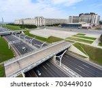 st. petersburg  russia circa... | Shutterstock . vector #703449010
