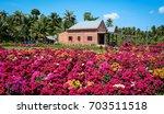 Flower Plantation With A Brick...