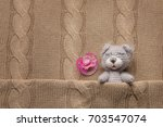 cute handmade toy bear and... | Shutterstock . vector #703547074