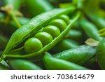 beautiful closeup of green... | Shutterstock . vector #703614679