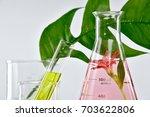 natural organic extraction and... | Shutterstock . vector #703622806