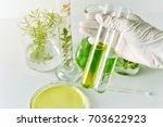natural medicine development in ... | Shutterstock . vector #703622923