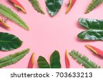flat lay design of leaf and... | Shutterstock . vector #703633213