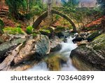 the old stone bridge ... | Shutterstock . vector #703640899