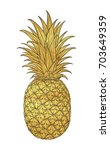 hand drawn decorative pineapple.... | Shutterstock .eps vector #703649359